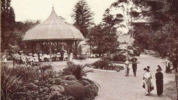 Qld botanic gardens 1920